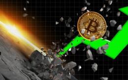 """Bitcoin """"sập sàn"""" vẫn đè bẹp các tiền ảo khác"""