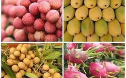 Thừa nhận kết quả truy xuất nguồn gốc đối với 8 loại nông sản Việt Nam