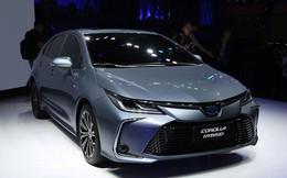 Những mẫu xe phổ thông 'đáng mong chờ' chuẩn bị ra mắt tại Việt Nam cuối 2019