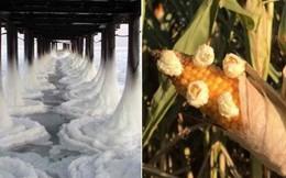 Loạt ảnh ấn tượng cho thấy tác động dữ dội của biến đổi khí hậu tới cuộc sống con người