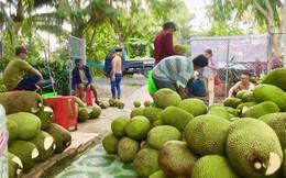 Mít Thái bất ngờ tăng giá mạnh