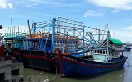 Ngư dân Phú Yên gặp nhiều vướng mắc về hạn ngạch khai thác thủy sản