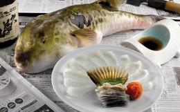 7,5 triệu đồng/100g thịt, ai mà ngờ loại cá vừa xấu xí vừa cực độc này lại đáng giá ở Nhật Bản đến thế
