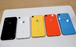 Chuyên gia: Mức thuế mới của Mỹ với Trung Quốc sẽ làm tăng giá iPhone