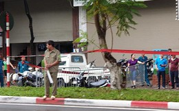 Cây phượng bật gốc, đè người đàn ông đi xe máy tử vong trên phố Hà Nội