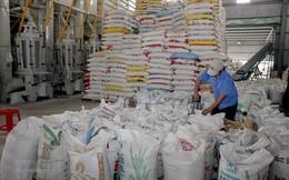 42 thương nhân được cấp phép xuất khẩu gạo theo Nghị định 107