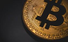 Bitcoin sụp đổ, nhà đầu tư nên mua hay bán?