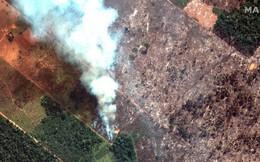 """Thảm họa của thế kỉ 21: Rừng Amazon có thể tự dập lửa nhưng bị chính con người """"bức tử"""" và sự trả thù của thiên nhiên sẽ vô cùng tàn khốc"""