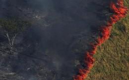 8,2 tỷ USD đang có nguy cơ cháy rụi cùng rừng Amazon