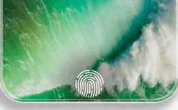 iPhone 2020 bản cao cấp sẽ có Touch ID dưới màn hình, bản giá rẻ sẽ có Touch ID dưới nút Home