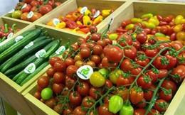 """Trung Quốc hoàn tất thủ tục mua bán hàng nông sản có """"quy mô tương đối"""" với Mỹ"""