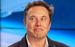 """Elon Musk """"úp mở"""" lượng đặt xe kỷ lục, cổ phiếu Tesla bùng nổ"""