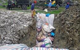 Thanh Hóa: Mỗi ngày tiêu hủy 2.500 - 3.000 con lợn nhiễm dịch tả lợn châu Phi