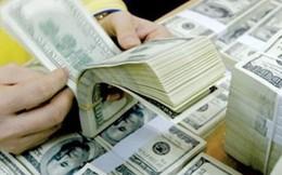 Kiều hối về Việt Nam năm 2019 dự kiến đạt khoảng 16 tỷ USD