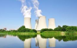 Dừng điện hạt nhân Ninh Thuận, giải quyết ổn thoả với Nga - Nhật