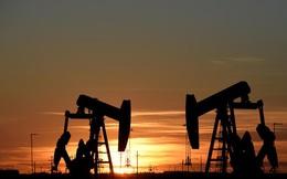 Chuyên gia dự báo gì về giá dầu trong 2020?