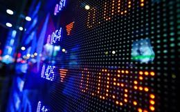 PXP Vietnam Fund: Không ngạc nhiên khi VN-Index rơi xuống dưới 500 điểm nếu tiếp tục trì hoãn nới room