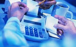 Gilimex (mẹ): Lợi nhuận năm 2013 đạt 90 tỷ đồng, tăng mạnh so với cùng kỳ