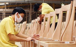 Liệu chương trình FLEGT – VPA có cản trở đà tăng trưởng của doanh nghiệp xuất khẩu gỗ?