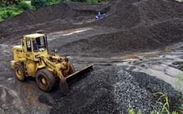 """""""Xuất khẩu than sẽ phải giảm mạnh do không có lãi"""""""