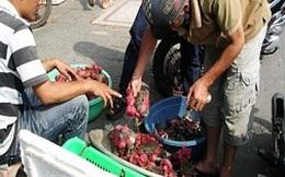 Cua biển bán giá siêu rẻ đầy trên vỉa hè ở TP.HCM