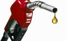 Xăng dầu nhập khẩu giảm mạnh: Dấu hiệu nền kinh tế chưa khỏe?