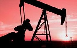 Mỹ trừng phạt các thực thể giúp Tehran bán dầu mỏ