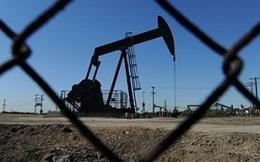 Mỹ sẽ là nước sản xuất dầu khí lớn nhất năm 2013?