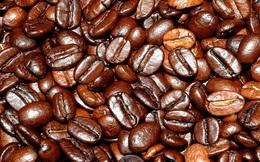 """Ngành cà phê cần """"chiếc ghế ICO"""""""