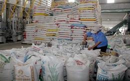 Gạo Việt Nam bị áp thuế 20% khi xuất sang Mexico