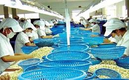 Xuất khẩu nông sản 2014: Vẫn chưa suôn sẻ!