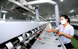 Thêm một loại sợi xuất khẩu của Việt Nam bị kiện