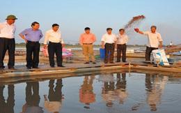 Nuôi trồng thủy sản tại các tỉnh phía Bắc: Quản lý chặt khâu giống