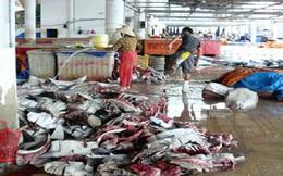 Hãi hùng hải sản khô