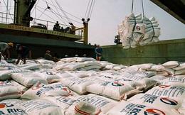 Đã xuất khẩu gần 2,34 triệu tấn gạo