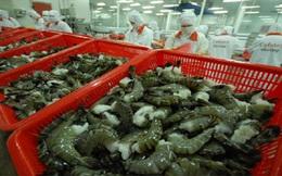 Việt Nam không bán phá giá tôm vào thị trường Hoa Kỳ