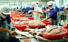 Phó Thủ tướng yêu cầu làm rõ việc độc quyền xuất khẩu cá tra vào Nga