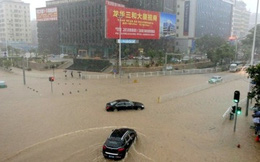 Đường sắt Hong Kong - Quảng Châu tê liệt vì bão lũ