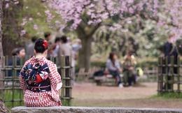 [Chart] Kinh tế Nhật Bản: Những cánh hoa rơi