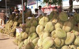 Khách hàng ngoại chuộng trái cây Đồng Nai