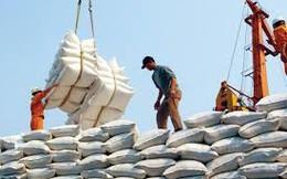 Doanh nghiệp Singapore đặc biệt quan tâm gạo Việt Nam