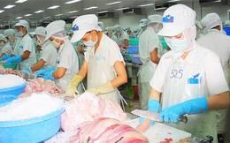 25 tấn cá tra của công ty Hùng Vương đã được giải tỏa tại Nga