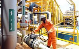 OPEC tìm cách giải quyết thực trạng thừa nguồn cung dầu mỏ
