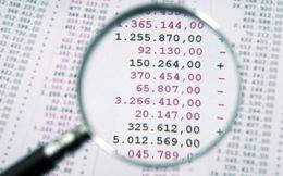 Đề nghị tập trung kiểm toán các tập đoàn, tổng công ty Nhà nước kinh doanh thua lỗ
