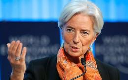 Ăn trưa với Giám đốc IMF