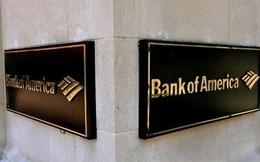 Đời nô lệ của nhân viên thực tập ngân hàng