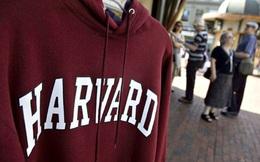Harvard cũng không thể bảo vệ tôi