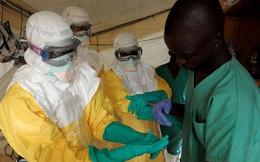 [BizChart] Sự bùng nổ đáng lo ngại của đại dịch Ebola