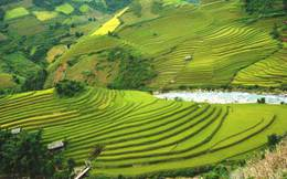 Quy hoạch sử dụng đất đến 2020 của tỉnh Yên Bái