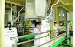 Nhập khẩu 30.000 tấn đường sản xuất tại Lào của HAGL: Khó quản tái xuất đường